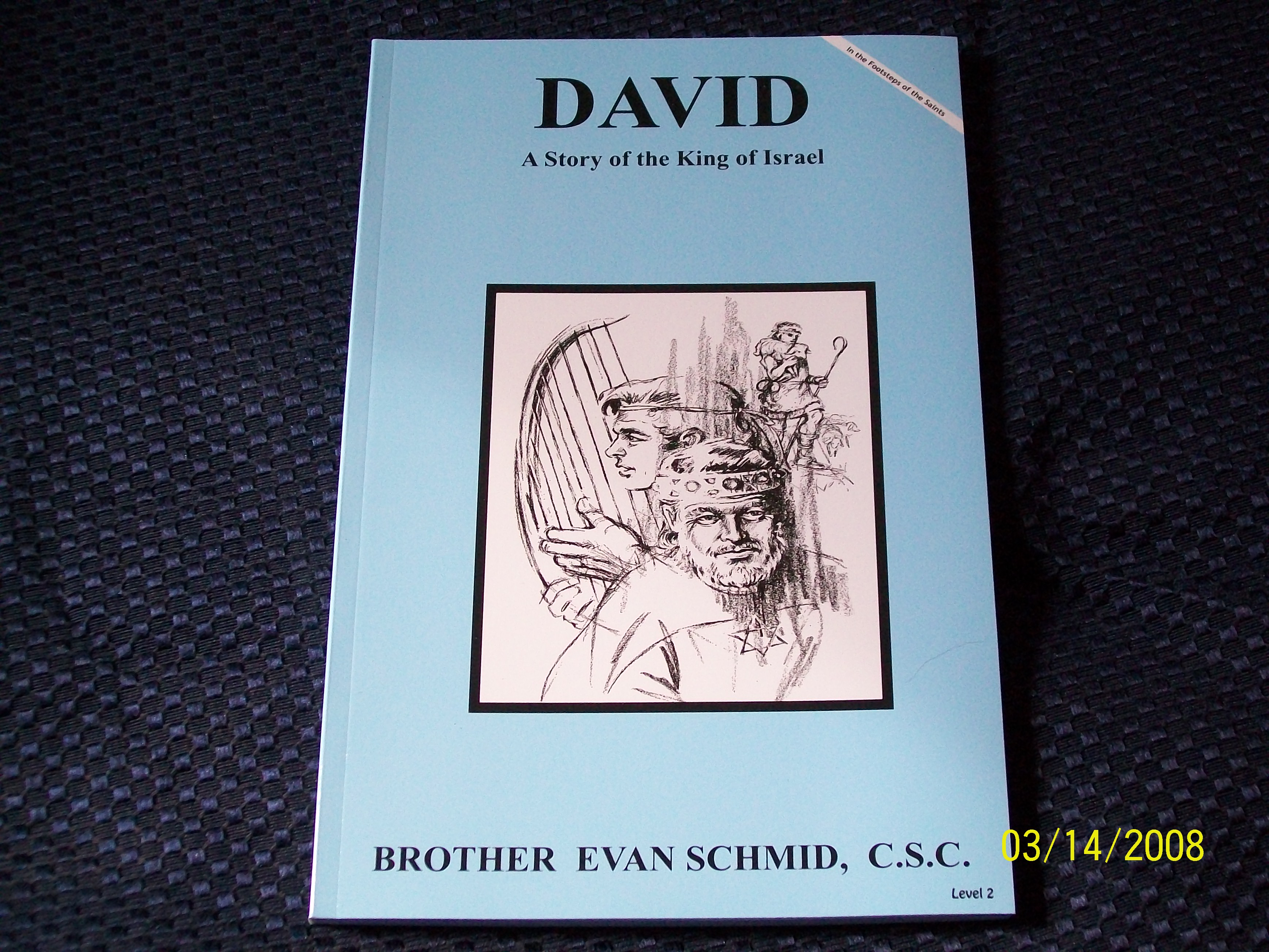 Image for David, A Story of the King of Israel